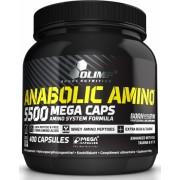 Anabolic Amino 5500